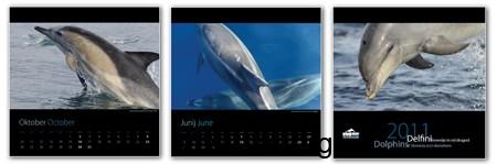 delfini slovenije koledar