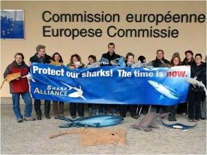 akcija Bruselj2