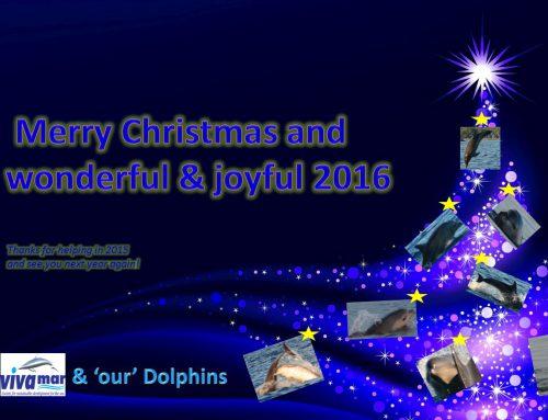 Vesel Božič in SREČNO 2016