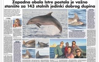 www.vivamar.org freiwilligendienst Delfin Organisation in Glas Istre