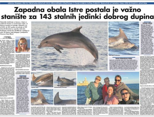 Vivamar successfully introduced the first long-term study about the bottlenose dolphins off Istria