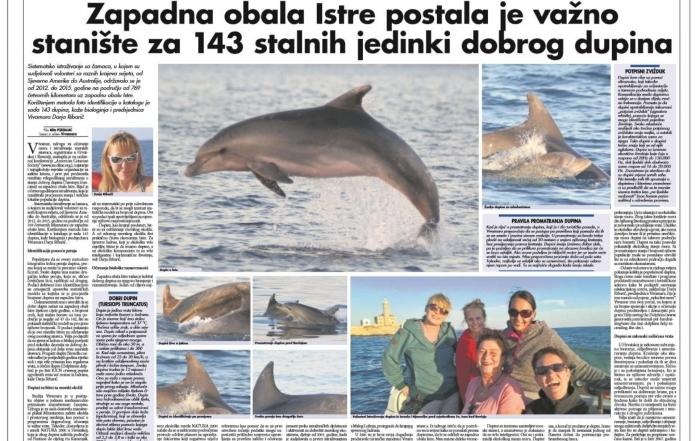 vivamar-delfini-glasistre